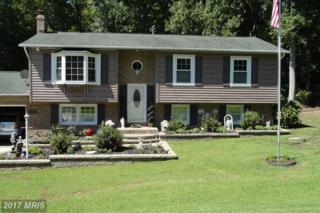 26483 Yowaiski Mill Road, Mechanicsville, MD 20659 (#SM9740715) :: Pearson Smith Realty