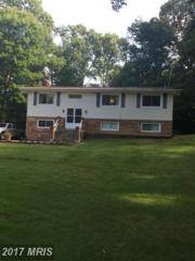 28976 Spring Rise Court, Mechanicsville, MD 20659 (#SM9744224) :: Pearson Smith Realty