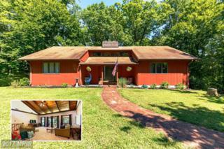 30018 Oak Acres Drive, Mechanicsville, MD 20659 (#SM9752568) :: LoCoMusings