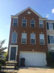 46040 Saltmarsh Drive, Lexington Park, MD 20653 (#SM9795268) :: Pearson Smith Realty