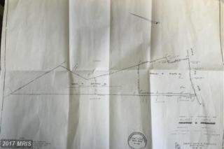 Mount Olive Road, Beaverdam, VA 23015 (#SP9738045) :: Pearson Smith Realty