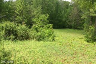 5211 Wyndemere Circle, Mineral, VA 23117 (#SP9862354) :: Pearson Smith Realty