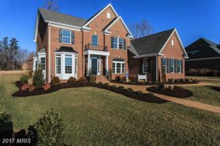 127 Hermitage Drive, Fredericksburg, VA 22407 (#SP9883107) :: Pearson Smith Realty