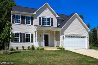54 Summerfield Lane, Fredericksburg, VA 22405 (#ST9583656) :: Pearson Smith Realty
