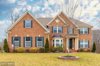 120 Scotts Ford Lane, Fredericksburg, VA 22406 (#ST9745028) :: LoCoMusings