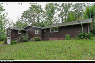 10 Japazaws Lane, Fredericksburg, VA 22405 (#ST9773120) :: Pearson Smith Realty