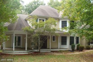 333 Old Cropps Mill Road, Fredericksburg, VA 22406 (#ST9787006) :: LoCoMusings