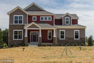 5 River Bend Drive, Fredericksburg, VA 22405 (#ST9794207) :: Pearson Smith Realty
