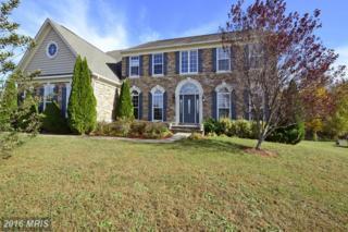 85 Stableside Lane, Fredericksburg, VA 22405 (#ST9808703) :: Pearson Smith Realty