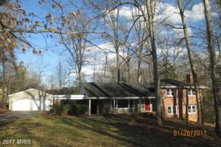 211 Lake Shore Drive, Fredericksburg, VA 22405 (#ST9840500) :: Pearson Smith Realty