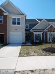 20421 Ashville Drive, Millsboro, DE 19966 (#SU9626509) :: LoCoMusings