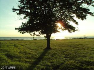 Windward Drive, Tilghman, MD 21671 (#TA8696992) :: LoCoMusings