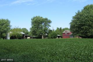 Bozman Neavitt Road, Bozman, MD 21612 (#TA8748537) :: Pearson Smith Realty