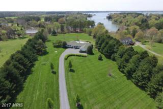 26617 Arcadia Shores Road, Easton, MD 21601 (#TA9893108) :: Pearson Smith Realty