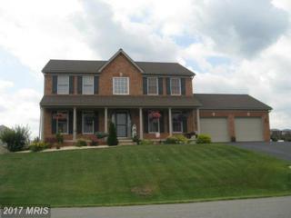 13609 Pulaski Drive, Hagerstown, MD 21742 (#WA8559444) :: Pearson Smith Realty