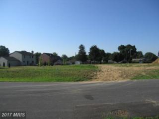 16727 Custer Court, Williamsport, MD 21795 (#WA8598333) :: LoCoMusings