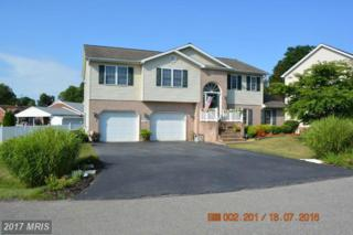 16925 Cavalry Drive, Williamsport, MD 21795 (#WA9718388) :: Pearson Smith Realty