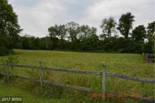 7102 Barrett Court, Sharpsburg, MD 21782 (#WA9760671) :: Pearson Smith Realty