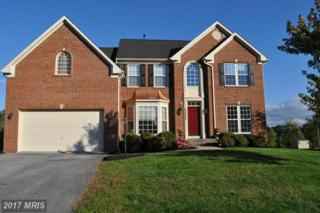 13823 Exeter Court, Hagerstown, MD 21742 (#WA9791351) :: LoCoMusings