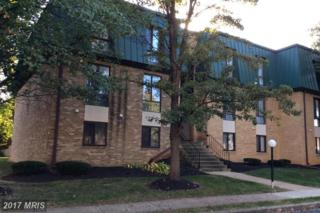 1036-301 Brinker Drive #301, Hagerstown, MD 21740 (#WA9795457) :: Pearson Smith Realty