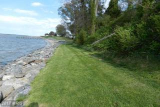 0 Riverview Drive, Colonial Beach, VA 22443 (#WE8558361) :: LoCoMusings