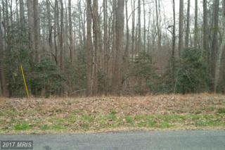 N. Independence Drive, Montross, VA 22520 (#WE9557565) :: Pearson Smith Realty