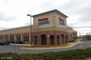 31 Jubal Early Drive E, Winchester, VA 22601 (#WI8558292) :: Pearson Smith Realty