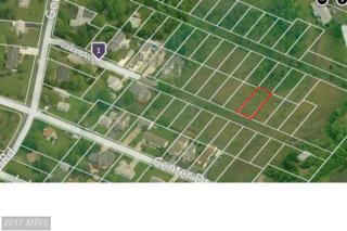 LOT 17 Lake Avenue, Ocean City, MD 21842 (#WO9578332) :: Pearson Smith Realty