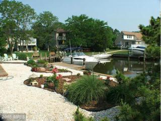 3 Sandy Circle, Ocean Pines, MD 21811 (#WO9597493) :: Pearson Smith Realty