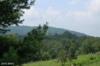White Pine - Lot 17 Court, Front Royal, VA 22630 (#WR8771073) :: Pearson Smith Realty