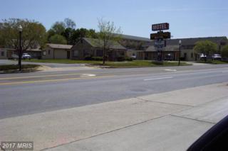 1600 Shenandoah Avenue, Front Royal, VA 22630 (#WR8774456) :: LoCoMusings