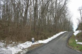 Harris Drive, Front Royal, VA 22630 (#WR9566315) :: LoCoMusings