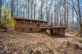 27 Chipmunk Trail Lane, Linden, VA 22642 (#WR9594771) :: Pearson Smith Realty