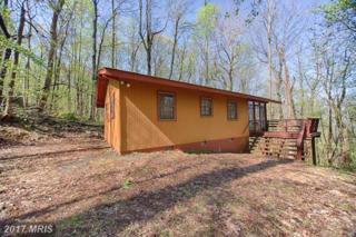 351 Rocky Boulder Lane, Linden, VA 22642 (#WR9645215) :: Pearson Smith Realty