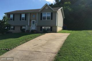 1203 South Fork Drive, Front Royal, VA 22630 (#WR9740717) :: LoCoMusings
