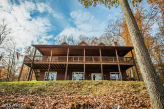 1115 Blue Mountain Road, Front Royal, VA 22630 (#WR9808357) :: Pearson Smith Realty