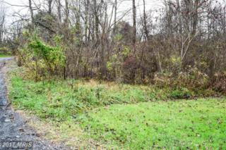 448 Clover Trail, Delta, PA 17314 (#YK9681997) :: LoCoMusings