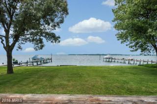 3750 Thomas Point Road, Annapolis, MD 21403 (#AA9599568) :: Pearson Smith Realty