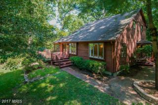1677 Chinford Trail, Annapolis, MD 21401 (#AA9738456) :: Pearson Smith Realty
