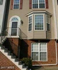 41 Harbour Heights Drive, Annapolis, MD 21401 (#AA9799690) :: Pearson Smith Realty