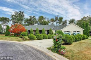 93 Beechwood Drive, Fairfield, PA 17320 (#AD9688081) :: Pearson Smith Realty