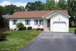 549 Grant Drive, Gettysburg, PA 17325 (#AD9709253) :: Pearson Smith Realty