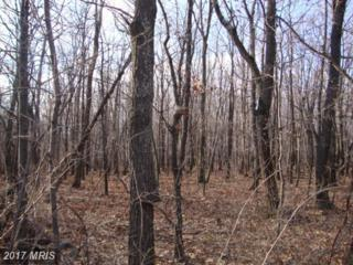 Piney Mt Road S, Eckhart Mines, MD 21528 (#AL7730737) :: Pearson Smith Realty