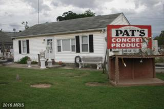 11035 New Philadelphia Road Road, White Marsh, MD 21162 (#BC8450256) :: Pearson Smith Realty