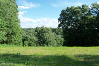 7 Farm Meadow Court, Freeland, MD 21053 (#BC8466585) :: Pearson Smith Realty