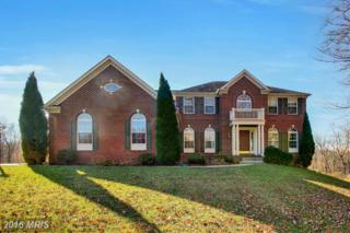 2201 River Bend Court, White Hall, MD 21161 (#BC9809385) :: Pearson Smith Realty