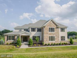 13309 Brighton View Court, Phoenix, MD 21131 (#BC9895608) :: Pearson Smith Realty