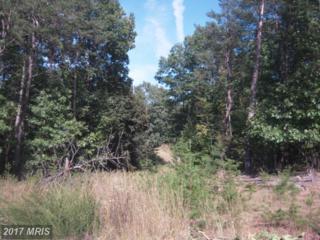 Cheyennes Trail, Gerrardstown, WV 25420 (#BE7930939) :: LoCoMusings