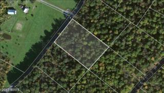 LOT 3 Back Creek Valley Road, Hedgesville, WV 25427 (#BE8751554) :: LoCoMusings