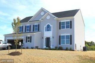 85 Portsmouth Court, Falling Waters, WV 25419 (#BE8764260) :: LoCoMusings